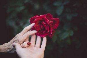 Die Hände nicht vergessen, sie verraten unser Alter